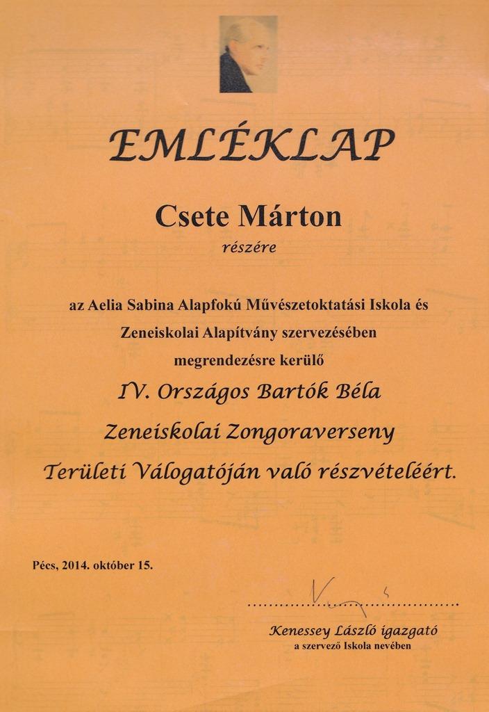 Csete Márton-2014. október 15.