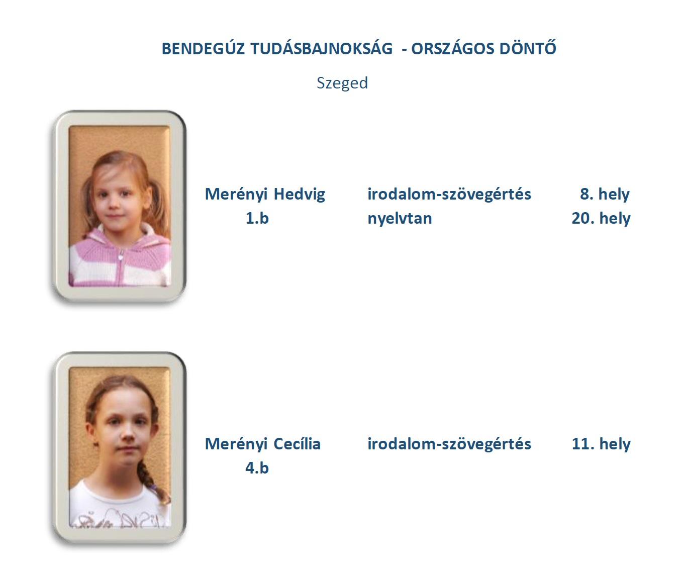 Bendegúz-Tudásbajnokság-Országos döntő